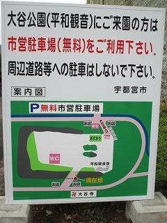 IMG_4411.jpg
