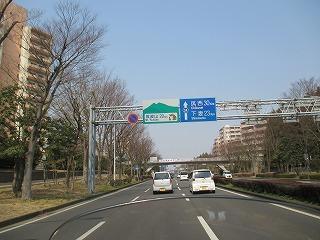 IMG_8485.jpg